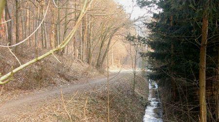Pilské údolí