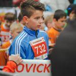 BB_2015_Marek_Šafář_043.JPG